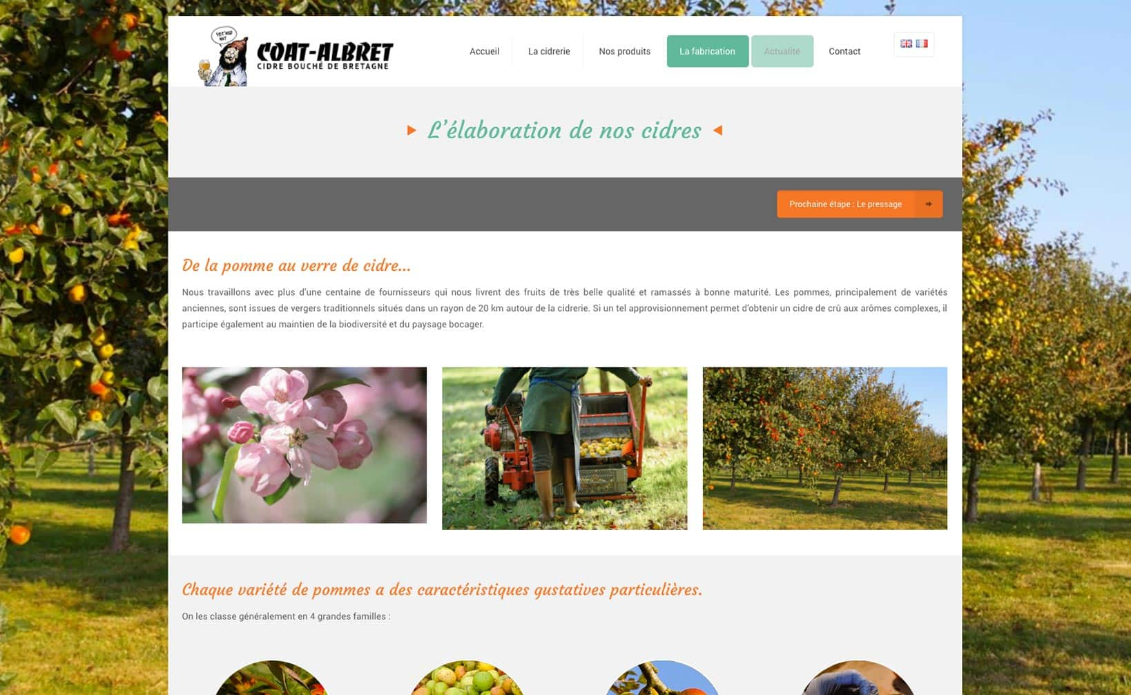 Site web Coat Albret - vue desktop 3