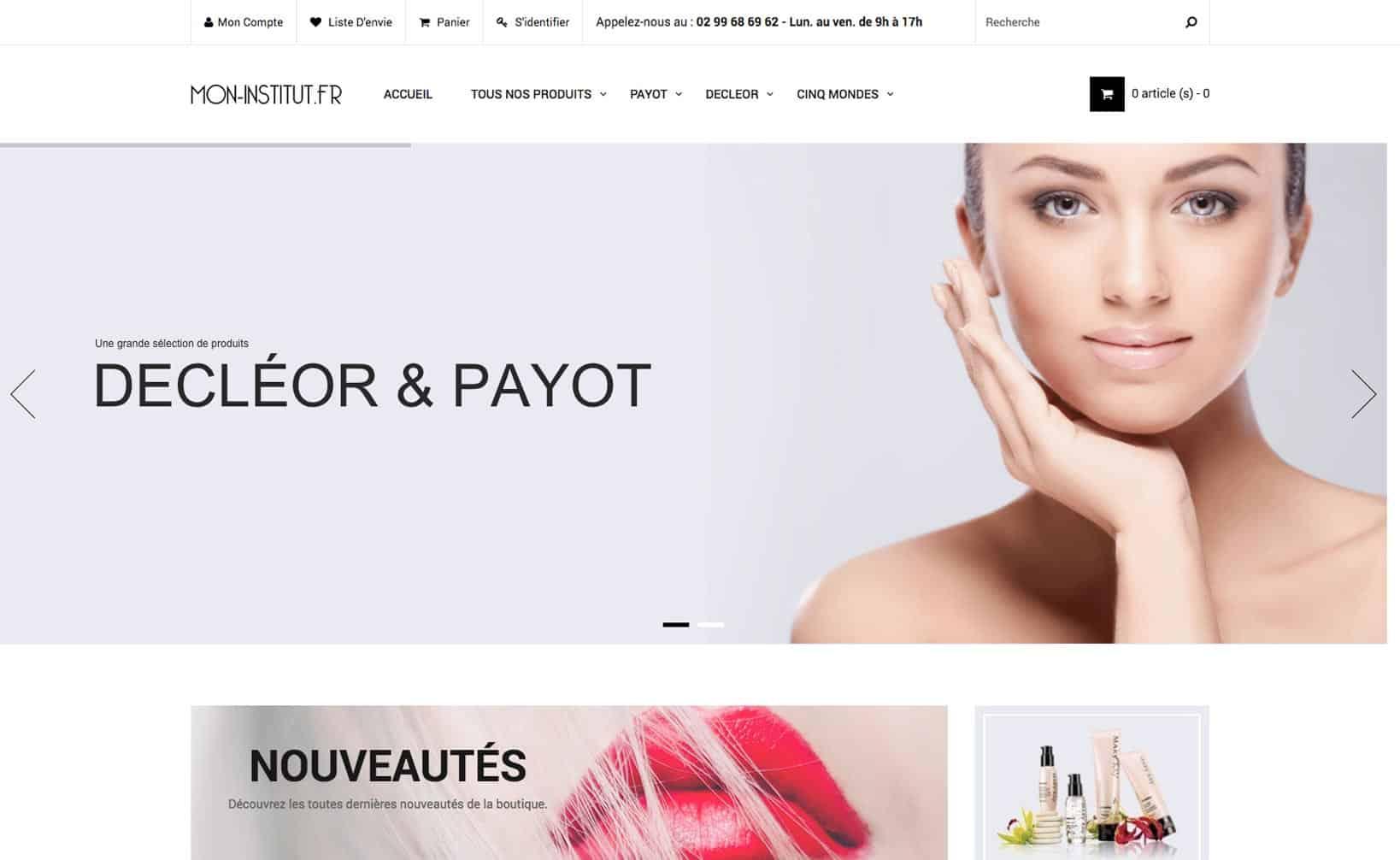 Site web Mon Institut - vue desktop 1